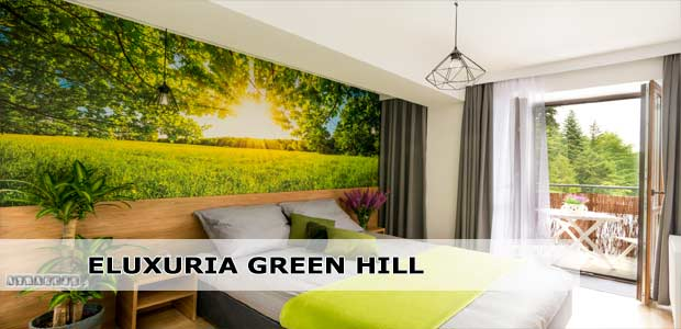 ELuxuria Green Hill Apartment